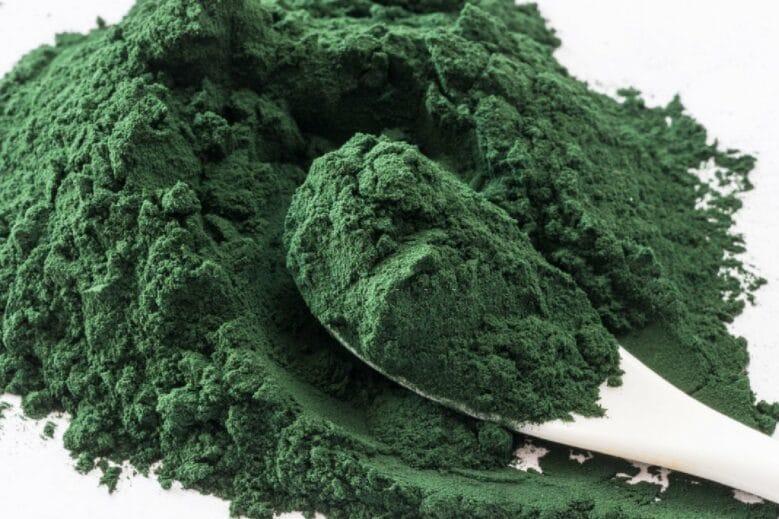 El alga espirulina es uno de los alimentos vegetales que más proteínas contiene.