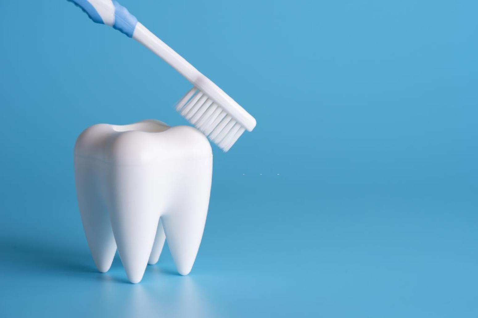 La limpieza dental es el hábito más importante para una buena salud bucal.