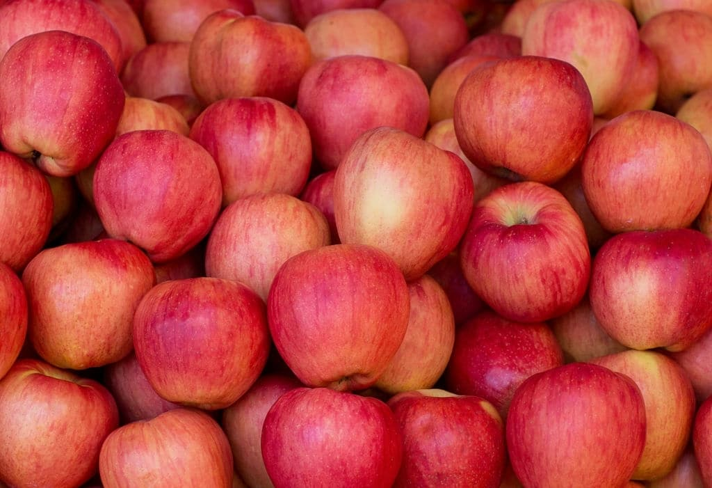 La manzana es una de las frutas mas versátiles a la hora de preparar platillos. Puedes preparar desde ensalada hasta natillas.